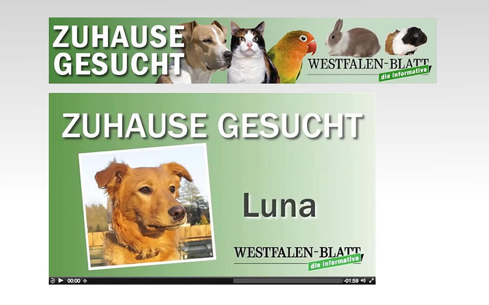 WESTFALEN-BLATT Zuhause gesucht