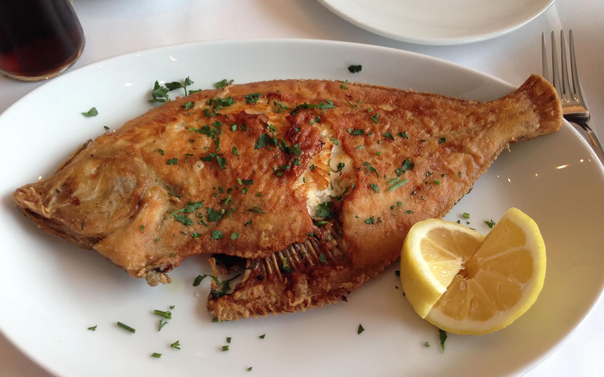 Frischer Fisch im COAST