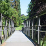 Auf die Aa hinausragende Brücke am Steintorwall.
