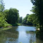 Blick auf das Frederica Ufer in der Nähe vom Aawiesenpark.